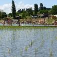 Moradores de Cublize, na França aproveitam o calor do verão europeu para nadar em um lago artificial construído na cidade com uma técnica renovável para limpeza da água. (Foto: Philippe […]