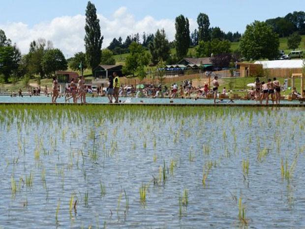 Moradores de Cublize, na França aproveitam o calor do verão europeu para nadar em um lago artificial construído na cidade com uma técnica renovável para limpeza da água. (Foto: Philippe Desmazes/AFP)