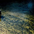 O mercúrio, além de trazer malefícios à saúde humana, agride o meio ambiente. Por meio de atividades industriais, a substância pode poluir a água, as plantas e os animais aquáticos, […]