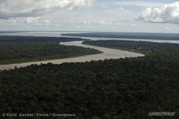 Os rios amazônicos têm extensões a perder de vista. Com governo pactuando, o novo Código Florestal retira a proteção de 50% dos cursos d'água no bioma.
