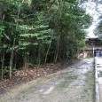 Alunos de escolas públicas da capital do Amazonas estudarão o potencial de absorção de carbono nas árvores do entorno de Manaus. A ação faz parte doProjeto de Monitoramento de Carbono,criado […]