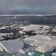 Resultados publicados nesta semana por um grupo de cientistas polares da Inglaterra, Austrália e França oferecem um nova dimensão para a compreensão das mudanças climáticas na Península Antártica, que se […]