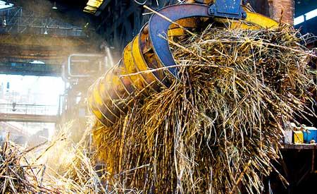 Bagaço da cana de açúcar é uma das alternativas para a produção do etanol de segunda geração. Foto: . Shell