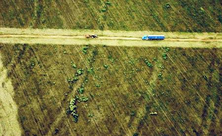 Entre abril, maio e junho deste ano o desmatamento causou a perda de 438,92 km² de cobertura florestal, uma área equivalente a 24 vezes o  arquipélago de Fernando de Noronha Foto:leoffreitas