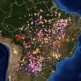 OCerradobrasileiro lidera o ranking de biomas com maior número de focos de incêndio registrados de janeiro a julho deste ano. De acordo com o Instituto Nacional de Pesquisas Espaciais (Inpe), […]
