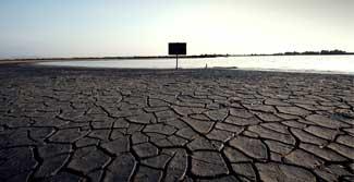 Somos todos idiotas em relação à mudança climática
