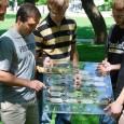 Uma equipe de cientistas da Universidade Vanderbilt, nos Estados Unidos, criou uma maneira de combinar a proteína da fotossíntese do espinafre, que permite transformar luz em energia, com silício, material […]