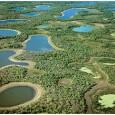 """Entrevista com Débora Calheiros, da Embrapa Pantanal. """"Se quisermos conservar o Pantanal, deveremos solicitar que os órgãos gestores federais e estaduais tomem uma atitude. Infelizmente, só conseguimos algum resultado através […]"""