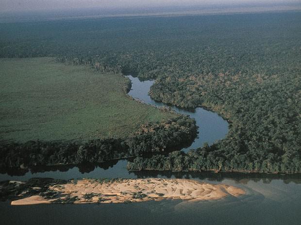 Vista aérea da floresta amazônica na região dos arredores do rio Guaporé (Foto: André Edouard/Arquivo/AFP)