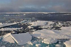 Cientista inglês prevê degelo total do Ártico em 4 anos