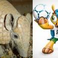 O tatu-bola (Tolypeutes tricinctus) mamífero brasileiro que corre o risco de extinção foi escolhido como a mascote da Copa 2014 no Brasil após ter sido sugerido pela ONG cearense Associação […]