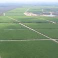 Brasil e o México assinaram projeto de cooperação técnica para trocar conhecimento entre os dois países e estabelecer estratégias para a gestão de seus perímetros públicos de irrigação. O projeto […]