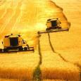 Vislumbrando o aumento do consumo de alimentos nos próximos vinte anos, a expansão agrícola deve considerar as áreas degradadas e investir em produtos diversificados, oriundos das florestas e biomas do […]