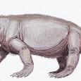 Um surto de efeito estufa há 250 milhões de anos foi uma das principais causas do evento de extinção de espécies mais catastrófico da história do planeta, sugere um novo […]