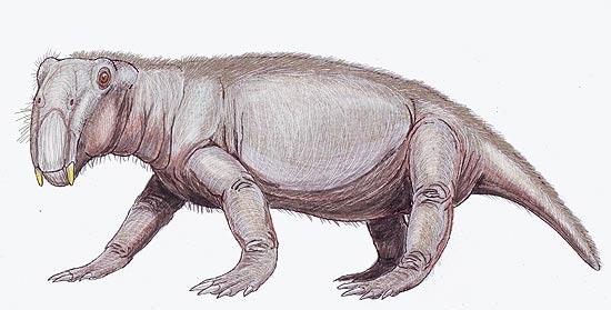 Concepção artística de listrossauro, um dos poucos animais sobreviventes da Grande Extinção