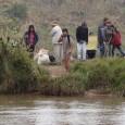 O caso do grupo de 170 índios guarany-kaiwá que ocupa 2 hectares (20 mil m²) de uma fazenda privada em Iguatemi (MS), a 466 km de Campo Grande, desde novembro […]