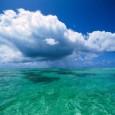 A preservação de áreas marinhas e costeiras marcou o Congresso Brasileiro de Unidades de Conservação, realizado na última semana em Natal (RN). Especialistas defenderam a criação de mais áreas de […]