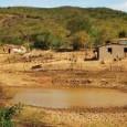 Um total de 121 municípios pernambucanos estão em situação de emergência por conta da estiagem. No entanto, o Governo Federal reconhece apenas 115 cidades. O último município pernambucano incluído na […]