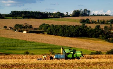 O modelo agroecológico permite a incorporação das três dimensões da sustentabilidade, a ecológica, econômica e social. Foto: Sxc.hu