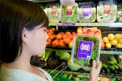 Consumidor consciente precisa de incentivo e visibilidade, revela pesquisa