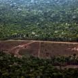 O Instituto do Homem e Meio Ambiente da Amazônia (Imazon), organização que faz um levantamento paralelo ao oficial sobre a devastação na região amazônica, registrou em setembro desmatamento de 431 […]