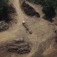 Caminhões e balsas carregadas de madeira, estradas, um porto improvisado e pilhas de árvores no chão. O cenário foi documentado há alguns dias pelo Greenpeace, num sobrevoo pelo entorno da […]