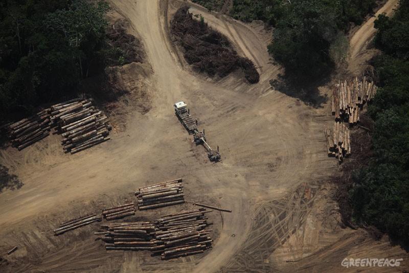 Caminhões, balsas, estradas e pilhas de madeira denuciam a intensa exploração no entorno da Reserva Extrativista Verde para Sempre, em Porto de Moz, Pará. © Greenpeace/Rodrigo Baleia