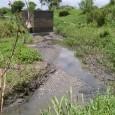O acesso à água tratada é direito de todos e obrigação do Estado – mas o que fazer se os serviços de saneamento tardam a chegar e as mulheres da […]