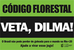 Dilma vai vetar alguns pontos da MP do Código Florestal, diz ministro da Agricultura
