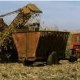 A empreiteira brasileira Odebrecht vai administrar uma central de colheita de cana e produção de açúcar em Cuba, marcando a abertura do setor agrícola da ilha a investimentos estrangeiros. O […]
