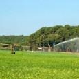 O governo anuncia nesta terça (13) à tarde o Programa Mais Irrigação, que destinará R$ 5,8 bilhões a projetos em áreas destinadas à agricultura em todo o país. Segundo o […]