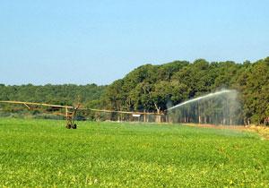 Projetos em áreas destinadas à agricultura terão R$ 5,8 bilhões para irrigação