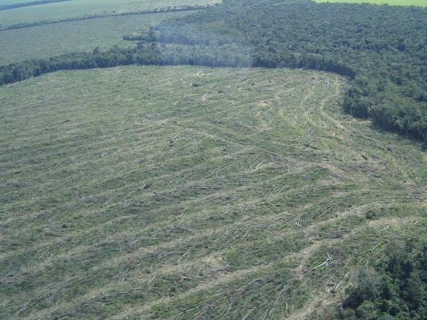 Imagem do Ibama mostra desmatamento ocorrido na região da Amazônia Legal em 2012 (Foto: Divulgação/IBAMA)