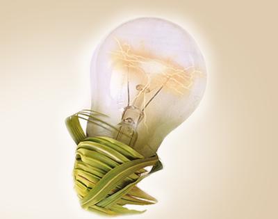 Uma luz no debate ambiental