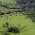 A partir de dezembro deste ano, as imagens captadas por um satélite alemão contratado pelo governo brasileiro vão apontar a situação nos 5,2 milhões de imóveis rurais que existem no […]