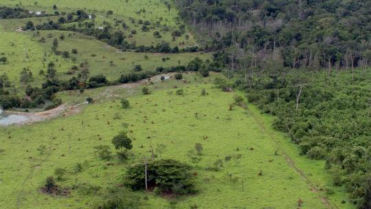 Ministério autoriza compra de imagens de satélite para o Cadastro Ambiental Rural