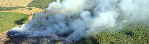 Queda no desmatamento entre 2005 e 2011 ajudou a reduzir as emissões de gases efeito estufa em 35%. Em contrapartida, energia e agricultura devem ssumir o posto inglório