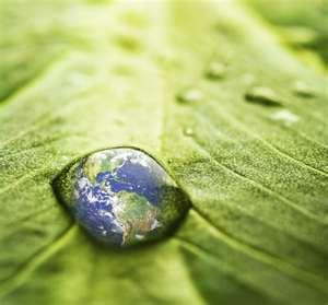 Ban Ki-moon envia carta a prefeitos do Brasil sobre sustentabilidade