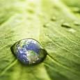 Representantes das 195 partes da Convenção Quadro das Nações Unidas sobre Mudanças Climáticas (UNFCCC) e de organizações não governamentais se encontrarão na próxima semana em Bonn, na Alemanha, para debater […]