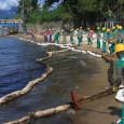A Vigilância Sanitária alerta os moradores e turistas para que evitem as praias do centro e costa norte de São Sebastião. Os locais podem ter sido afetados porum vazamento de […]
