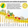 O Brasil é o campeão mundial no uso de agrotóxicos no cultivo de alimentos. Cerca de 20% dos pesticidas fabricados no mundo são despejados em nosso país. Um bilhão de […]