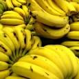 Como um dos efeitos da estiagem prolongada no Nordeste, a banana teve um aumento de 6,69% de acordo com última a pesquisa do Departamento Intersindical de Estatística e Estudos Socioeconômicos […]