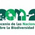As Nações Unidas estão promovendo até 2020 a Década da Biodiversidade, por meio de estratégias que devem ser cumpridas pelos países-membros da organização. O plano de ação tem no total […]