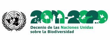 Década da Biodiversidade quer investir em consumidores