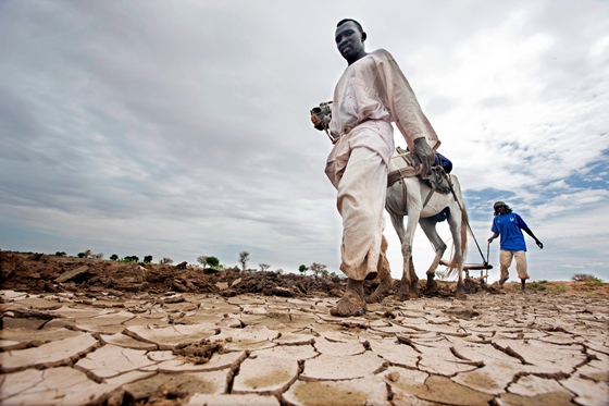 Novo estudo divulgado pela ONU aponta que o PIB do setor agrícola deixa de crescer até 5% ao ano por conta da degradação do solo. O problema ambiental também gera prejuízos sociais, contribuindo para a fome crônica de quase 870 milhões de pessoas em todo o mundo