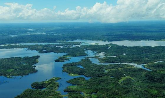 Estudo mostra que indicadores utilizados em políticas de preservação da Amazônia são pouco eficazes