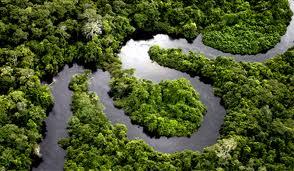 Megaprojetos abrem Amazônia para saque de recursos