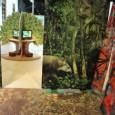 O Museu da Vida, da Fundação Oswaldo Cruz (Fiocruz), inaugurou na sexta-feira (26) a exposição Floresta dos Sentidos, que aborda temas atuais relacionados à biodiversidade das florestas brasileiras, como o […]