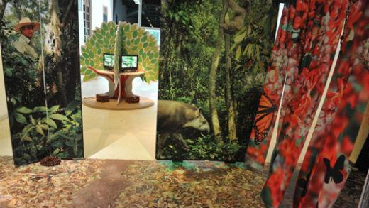 Museu da Vida inaugura exposição sobre biodiversidade das florestas brasileiras