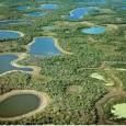 O projeto de construção de mais 87 Pequenas Centrais Hidrelétricas (PCHs) na Bacia do Alto Paraguai, em discussão atualmente, pode afetar a conectividade do planalto – onde nasce o Rio […]